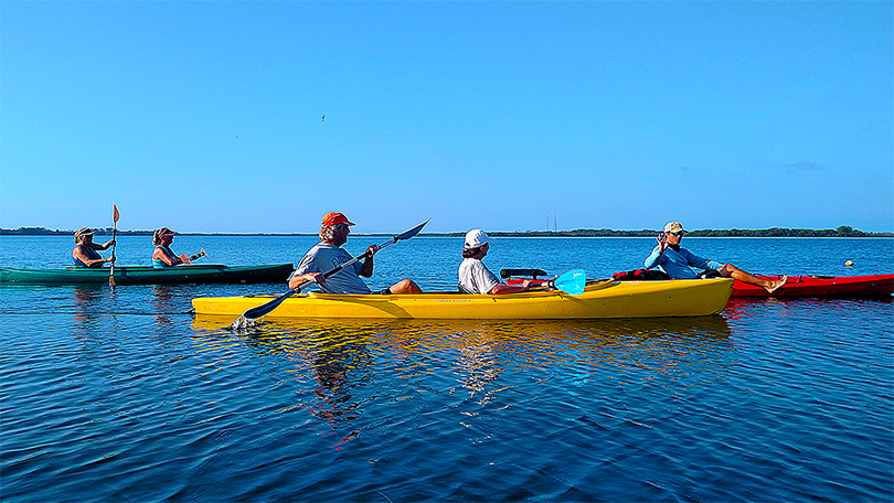 Island Kayak Tours 50/50 Tour Kayak Rental