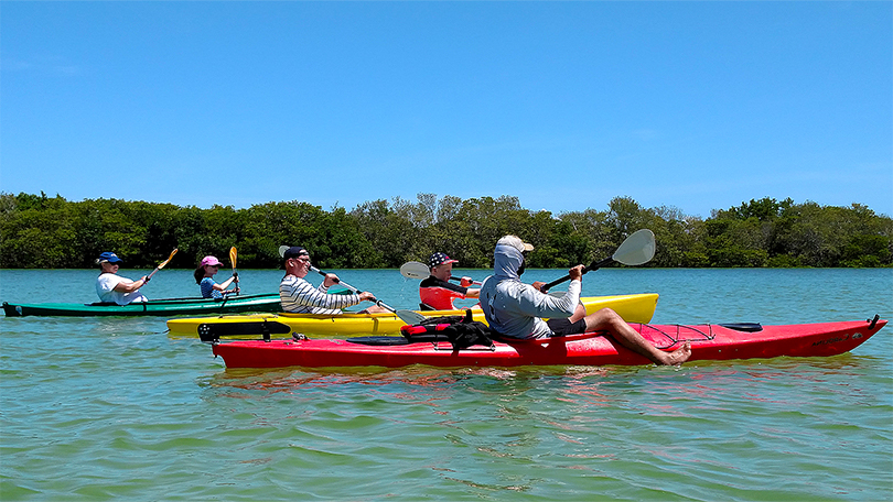 Island Kayak Tours Guided Tours & Adventures